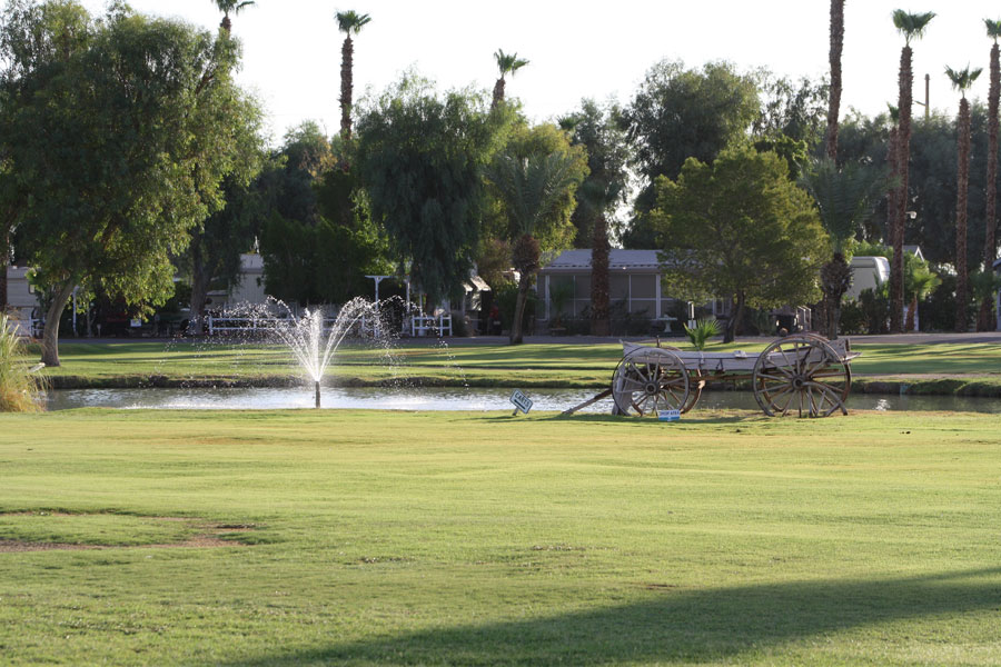 Desert Trails | Photo Gallery | RV Park and Golf Course
